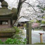 花見鎌倉2009その2