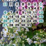 それでも心に花よ咲け、カレンダー壁紙2011年4月
