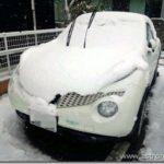 白ジュークも冠雪した