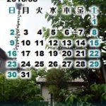 散歩げなカレンダー壁紙2015年8月