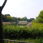 【ジュークの旅】その2:名古屋城へドライビン
